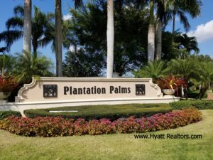 plantationpalms